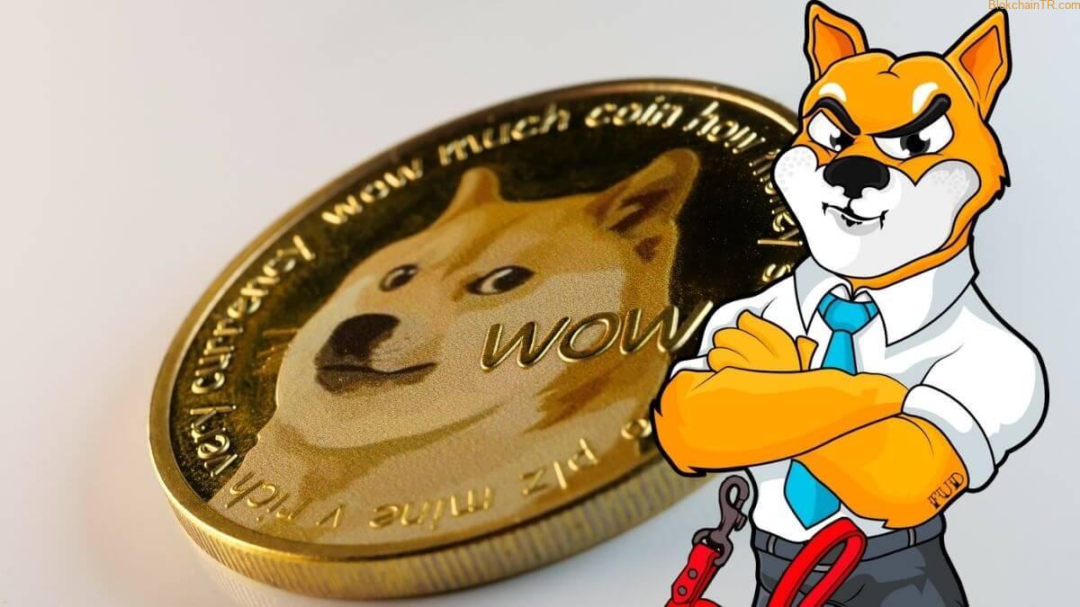 Shiba Inu (SHIB) Şov Yapıyor! SHIB coin ne zaman Coinbase'de listelenecek? - Haber Entel